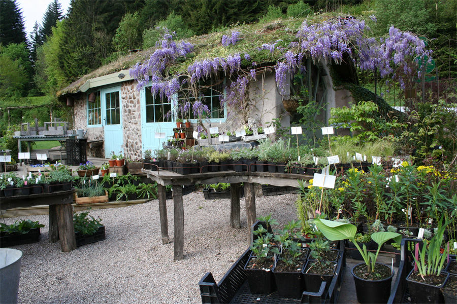 Jardin de berchigranges la p pini re for Jardin de cottage anglais